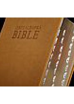 jeruzalemska_bible_deluxe-600x600